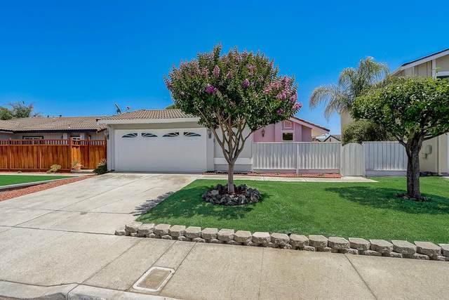 5870 Southwind Dr, San Jose, CA 95138 (#ML81798836) :: Intero Real Estate