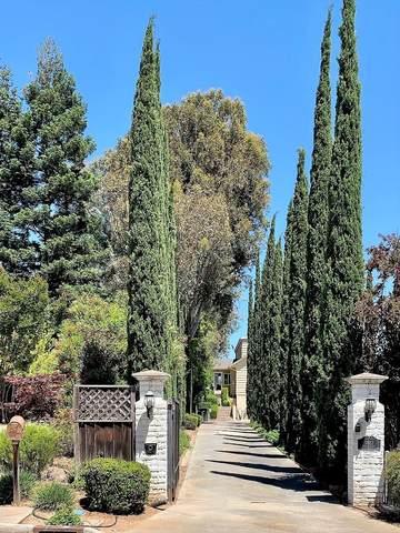 5962 Vista Loop, San Jose, CA 95124 (#ML81798863) :: Intero Real Estate