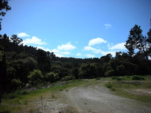7745 Paseo Venado, Monterey, CA 93940 (#ML81798967) :: Alex Brant
