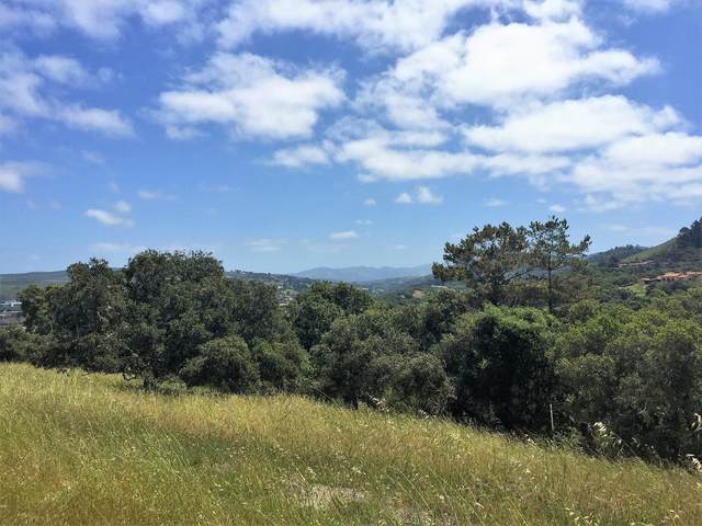 7572 Paseo Vista Place (Lot 52), Monterey, CA 93940 (#ML81799094) :: The Sean Cooper Real Estate Group