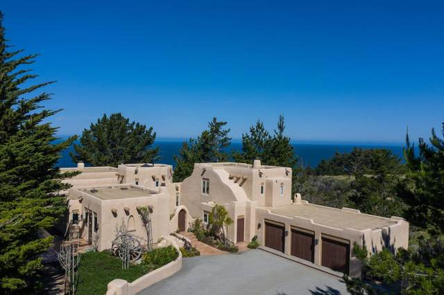 31541 Highway 1, Carmel, CA 93923 (#ML81799123) :: Real Estate Experts