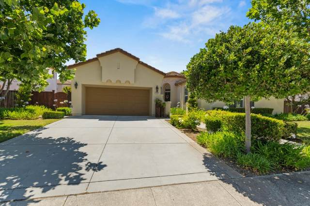 170 Thyme Ave, Morgan Hill, CA 95037 (#ML81799180) :: The Goss Real Estate Group, Keller Williams Bay Area Estates