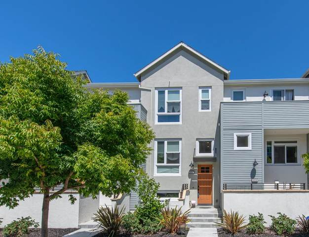 3037 Baze Rd, San Mateo, CA 94403 (#ML81799620) :: Strock Real Estate