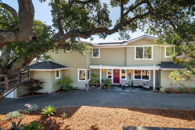 19 Dover Ct, San Carlos, CA 94070 (#ML81799681) :: The Sean Cooper Real Estate Group