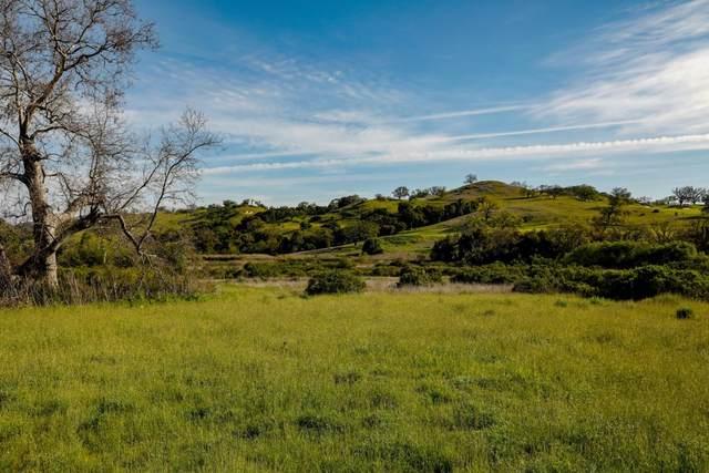 34222 Robinson Canyon Rd, Carmel, CA 93923 (#ML81799710) :: Alex Brant Properties