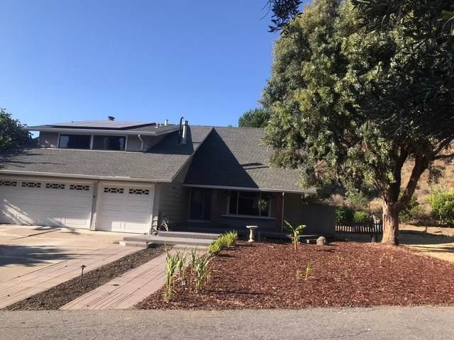 154 Cheltenham Way, San Jose, CA 95139 (#ML81799728) :: Team Olga