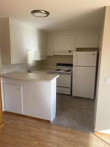 1458 Hudson St 207, Redwood City, CA 94061 (#ML81800048) :: Alex Brant Properties
