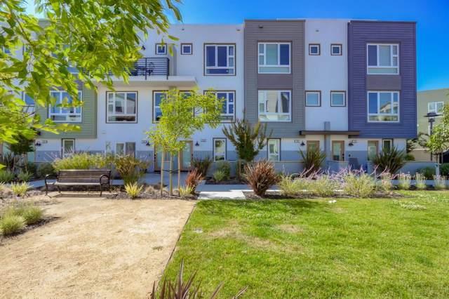 156 Hack Ross Ave, San Mateo, CA 94403 (#ML81800053) :: Strock Real Estate