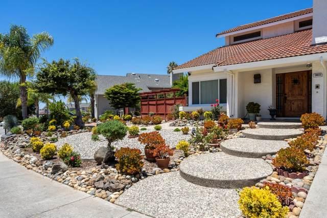 3463 Pepperidge Dr, San Jose, CA 95148 (#ML81800142) :: Strock Real Estate