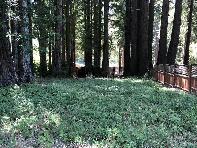 17141 Highway 9, Boulder Creek, CA 95006 (#ML81800155) :: Alex Brant Properties