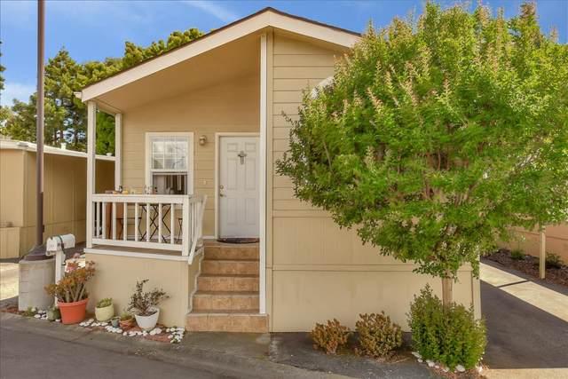 191 E El Camino Real 137, Mountain View, CA 94040 (#ML81800176) :: Intero Real Estate