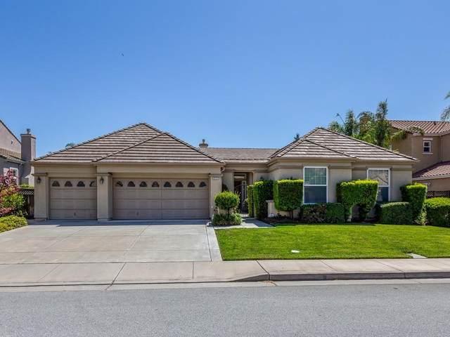19127 Blue Lynx Ct, Morgan Hill, CA 95037 (#ML81800194) :: Real Estate Experts