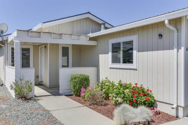 479 Vivienne Dr, Watsonville, CA 95076 (#ML81800231) :: Robert Balina | Synergize Realty