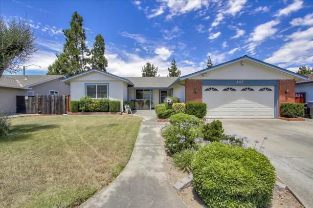 247 Castillon Way, San Jose, CA 95119 (#ML81800777) :: Alex Brant Properties
