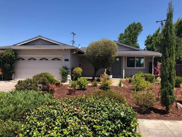998 Orchid Way, San Jose, CA 95117 (#ML81800950) :: The Sean Cooper Real Estate Group