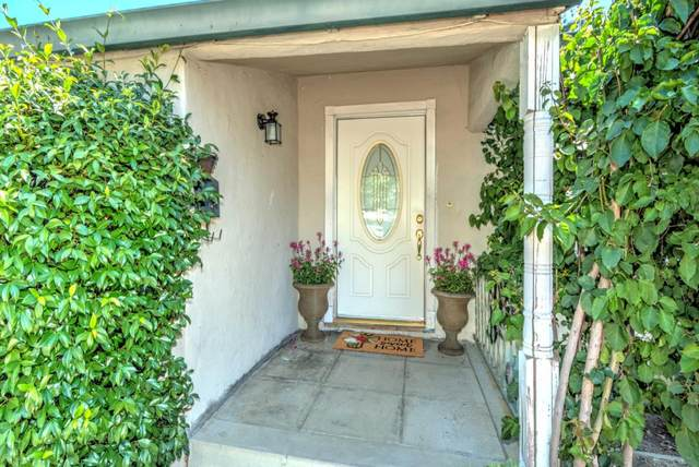 42 Carlyn Ave, Campbell, CA 95008 (#ML81801051) :: The Sean Cooper Real Estate Group
