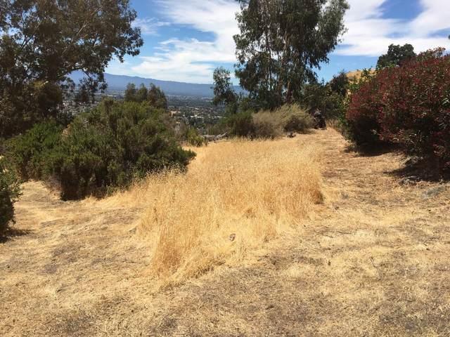 801 Boulder Dr, San Jose, CA 95132 (#ML81801176) :: The Realty Society