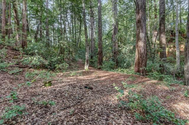 0 Mcgivern Way, Santa Cruz, CA 95060 (#ML81801651) :: Alex Brant Properties