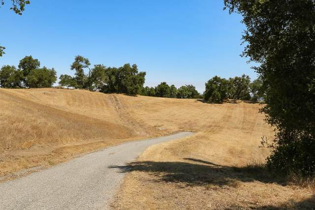 7 Long Ridge Trl, Carmel Valley, CA 93923 (#ML81801711) :: Strock Real Estate