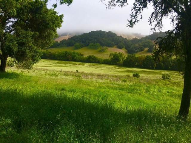 3 Wild Turkey Run, Carmel Valley, CA 93923 (#ML81802093) :: Strock Real Estate