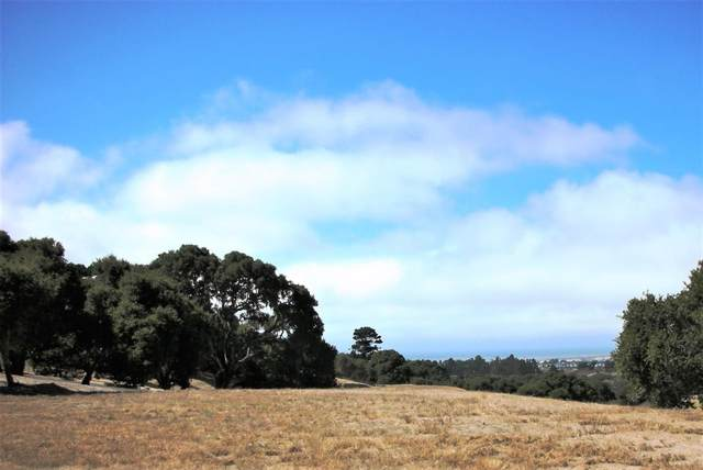 7599 Paseo Vista (Lot 75), Monterey, CA 93940 (MLS #ML81802234) :: Compass