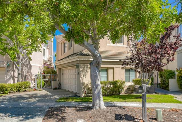 921 Corriente Point Dr, Redwood Shores, CA 94065 (#ML81802985) :: Strock Real Estate