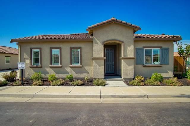 804 Fritz Dr, Los Banos, CA 93635 (#ML81803122) :: Strock Real Estate