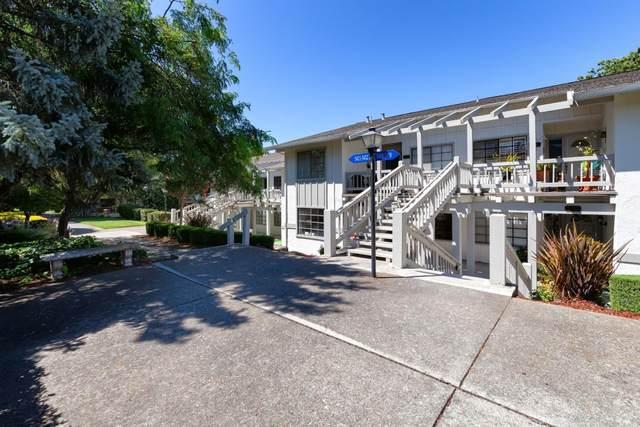 5414 Cribari Ct, San Jose, CA 95135 (#ML81803603) :: Alex Brant Properties