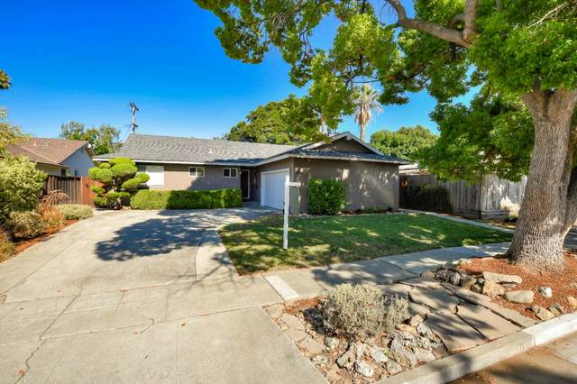 1244 Whitehall Ave, San Jose, CA 95128 (#ML81803746) :: Robert Balina | Synergize Realty