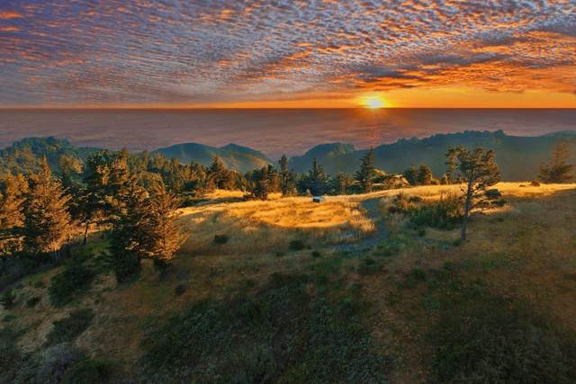 46720 Pfeiffer Ridge Rd, Big Sur, CA 93920 (#ML81804208) :: Robert Balina | Synergize Realty