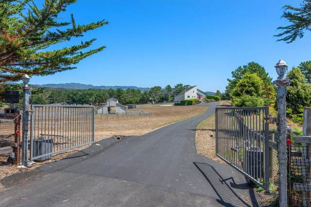 909 Linda Vista St, Moss Beach, CA 94038 (#ML81804408) :: The Kulda Real Estate Group