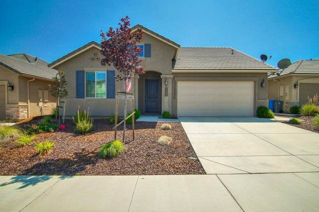 1569 Foxtail Ct, Hollister, CA 95023 (#ML81804461) :: The Realty Society