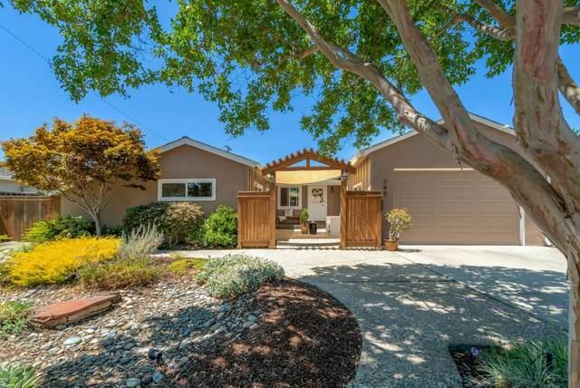 793 Blaisdell Ct, San Jose, CA 95117 (#ML81804534) :: Live Play Silicon Valley
