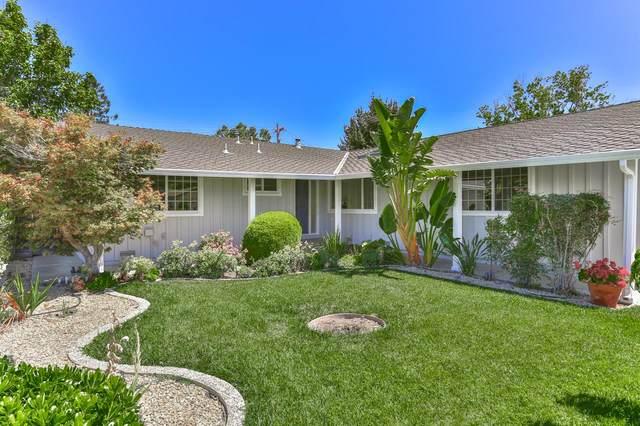3467 Speno Dr, San Jose, CA 95117 (#ML81804580) :: Intero Real Estate