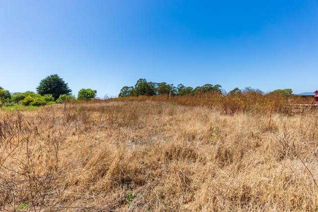 0-2 Marinero, Half Moon Bay, CA 94019 (#ML81804837) :: The Sean Cooper Real Estate Group