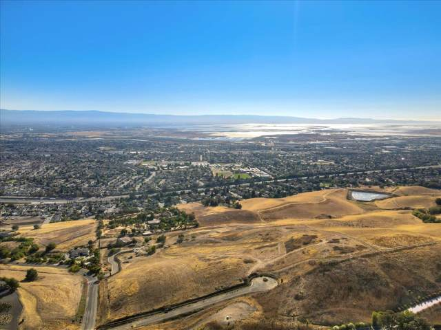 1321 Terra Vista Ct, Milpitas, CA 95035 (#ML81805022) :: The Goss Real Estate Group, Keller Williams Bay Area Estates