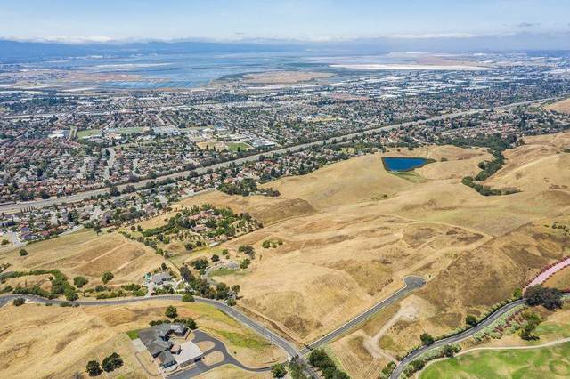 1339 Terra Vista Ct, Milpitas, CA 95035 (#ML81805025) :: The Goss Real Estate Group, Keller Williams Bay Area Estates