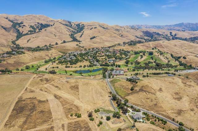 1333 Terra Vista Ct, Milpitas, CA 95035 (#ML81805027) :: The Goss Real Estate Group, Keller Williams Bay Area Estates