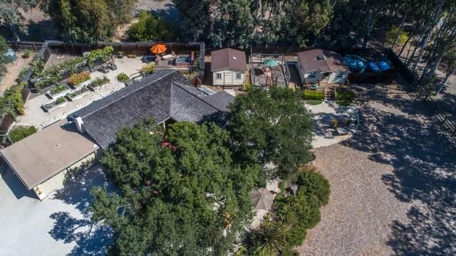 48 Miramonte Rd, Carmel Valley, CA 93924 (#ML81805057) :: Strock Real Estate