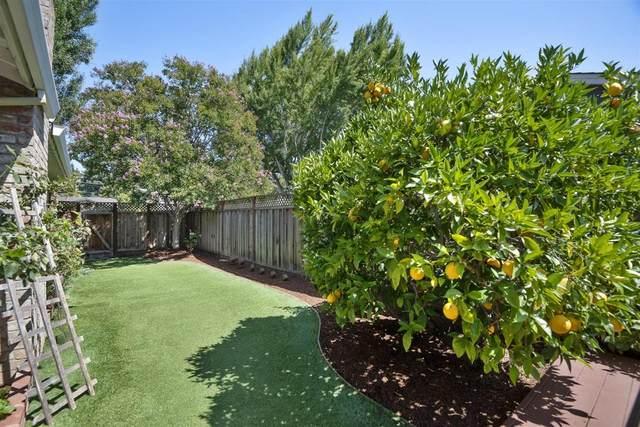 1552 Gretel Ln, Mountain View, CA 94040 (#ML81805124) :: The Goss Real Estate Group, Keller Williams Bay Area Estates