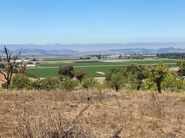 0 Old San Juan Hollister Rd, Hollister, CA 95023 (#ML81805164) :: The Realty Society