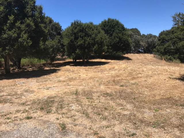 8100 Manjares, Monterey, CA 93940 (MLS #ML81805184) :: Compass