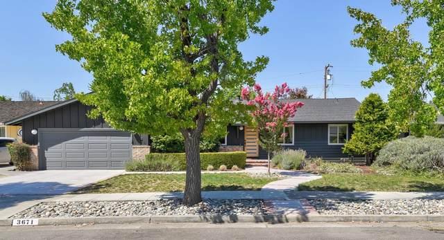 3671 Julio Ave, San Jose, CA 95124 (#ML81805768) :: The Gilmartin Group