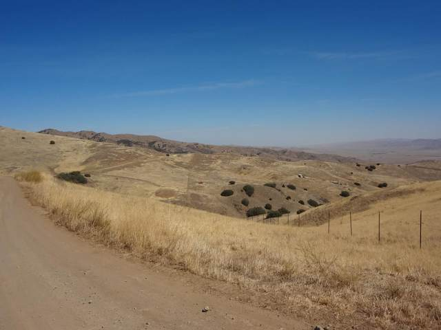 Lot 34 Panoche Rd, Paicines, CA 95043 (#ML81806822) :: The Gilmartin Group