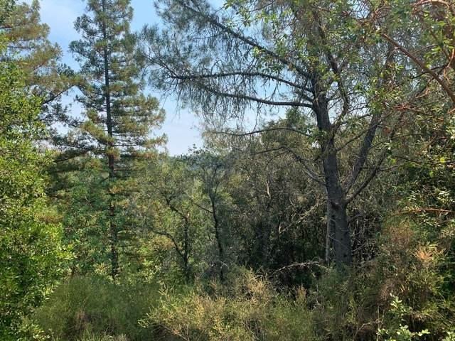 950 Middleton Dr, Boulder Creek, CA 95006 (#ML81807489) :: RE/MAX Gold