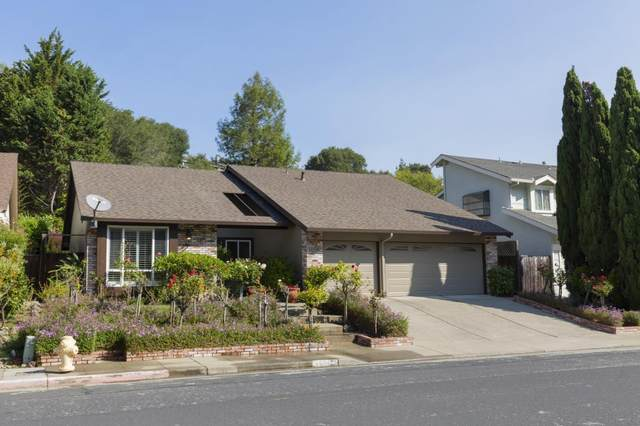 1508 Cherrywood Dr, San Mateo, CA 94403 (#ML81809619) :: Strock Real Estate