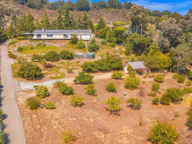 77 Howell Ln, Watsonville, CA 95076 (#ML81809964) :: The Sean Cooper Real Estate Group