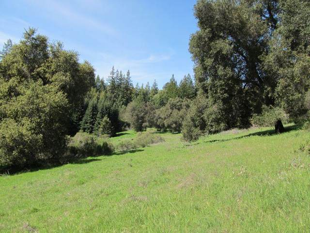 0 Two Bar Rd, Boulder Creek, CA 95006 (#ML81810757) :: RE/MAX Gold
