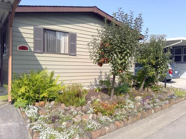 57 Sailfish 57, Half Moon Bay, CA 94019 (#ML81810840) :: Live Play Silicon Valley