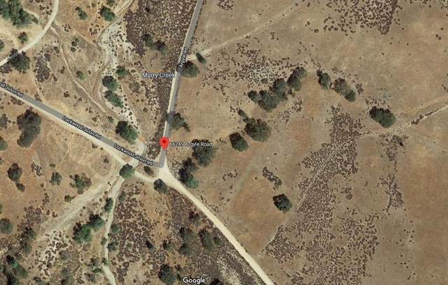 66249 Argyle Rd, King City, CA 93930 (#ML81811003) :: Strock Real Estate